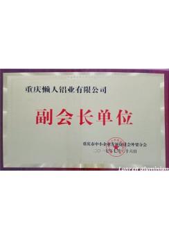 Vice President Company